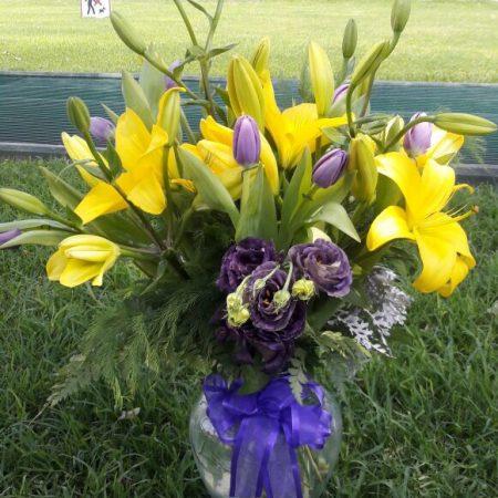 Tulipanes y Lilis